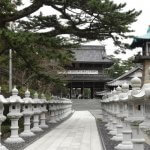 総門を入ると美しい灯籠が並びます。日蓮生誕800年への用意でしょう。松が見事です。