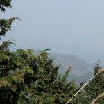復路、見晴台からの景観この日はあいにくの曇りです。【大山阿夫利神社】