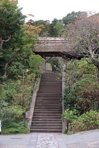 平成28年(2016年)10月29日、東慶寺の紅葉。