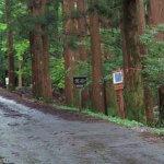 とやの沢林道。このあたりは舗装されています。もう少し奥へ入ると未舗装になります。